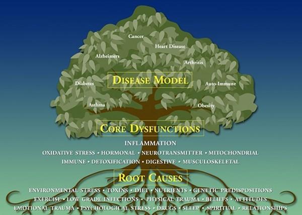 Functional-Medicine-Tree2