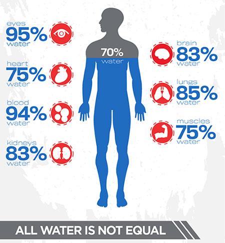 hydrated-human-body